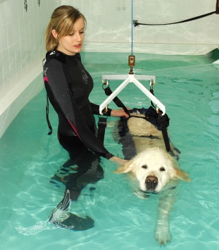 hydrotherapy-hoist-02