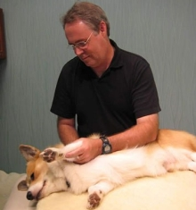 trigger-point-therapy-for-animals.jpg